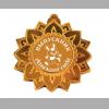 Медаль Выпускнику детского сада